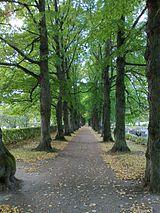Kävelykierros Malmin hautausmaalla